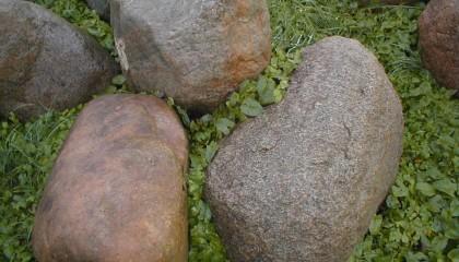 Findling – Endmoräne 0,1 – 1,5 Tonnen